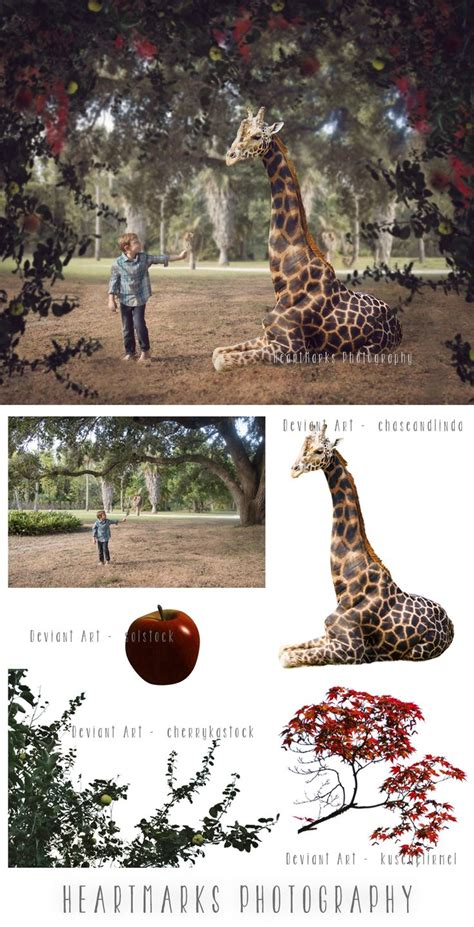 composite photography images  pinterest