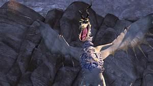 Dragons Season 2 Takes Off Jan 8 on Netflix Animation Magazine