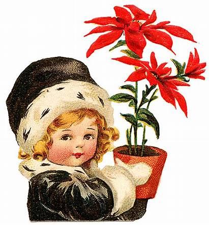Poinsettia Christmas Clip Clipart Flower Holding