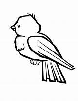 Bird Coloring Birds Bluebird Sheet Bluebirds sketch template