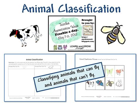 Learn and Grow Designs Website: Animal Classification