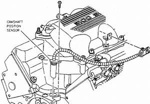 96 chevy lumina engine wiring diagram 96 get free image With chevy o2 sensor wiring diagram together with 96 camaro wiring diagram