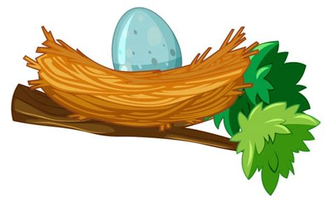 Nest Vectors, Photos And Psd Files