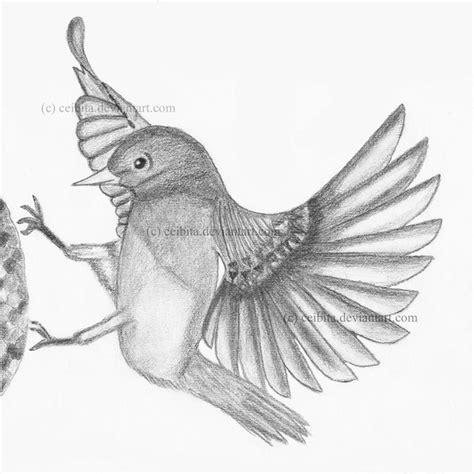 pencil shaded blue bird  ceibita  deviantart drawing