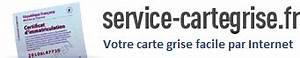 Changement Adresse Carte Grise Service Public : carte grise en ligne pour votre changement d 39 adresse et duplicata ~ Medecine-chirurgie-esthetiques.com Avis de Voitures