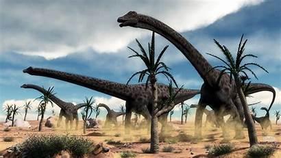Dinosaurs Prehistoric Diplodocus Herd Background Paleoart 3d