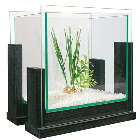petit aquarium design pas cher 28 images aquarium design gallery studio design gallery best