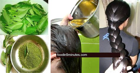 homemade hair conditioner oil recipe  hairs