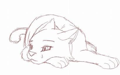 Cat Animation Practice Deviantart