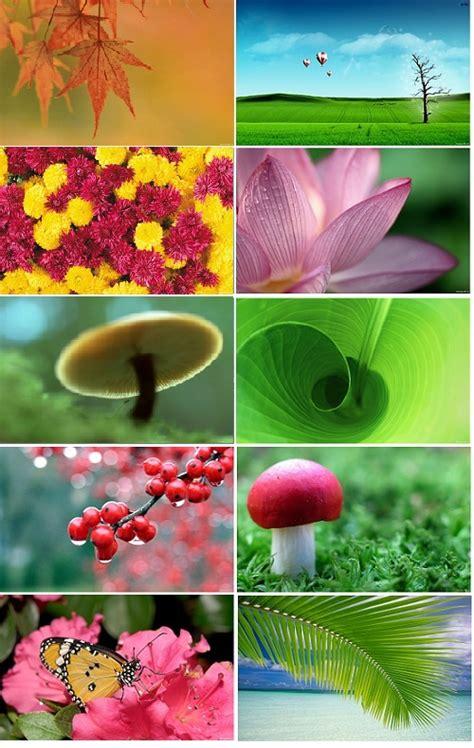 cool hd nature desktop wallpaper pack  windows