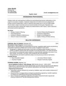 sle of a professional resume 28 images sales