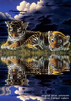 decorations crosswordgif water animations tranquil waters животные кошки гифу
