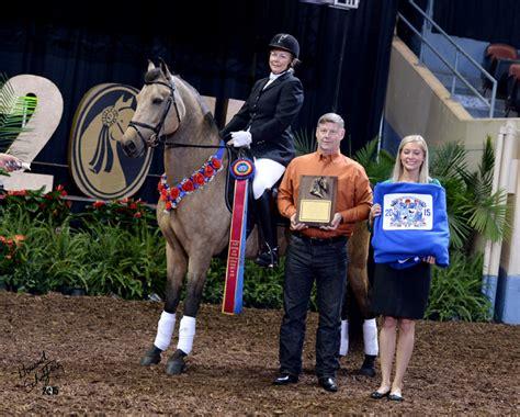 rhiannon beauregard american morgan horse association dressage