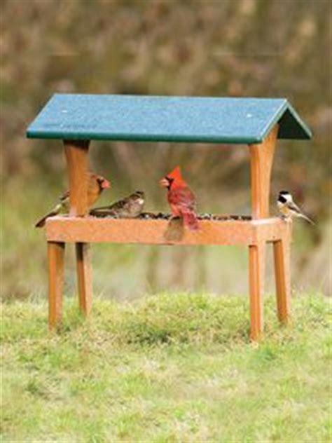 platform bird feeder ideas  pinterest