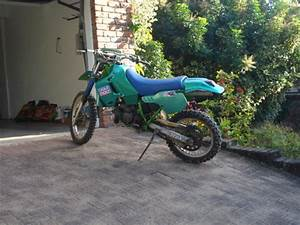 Kawasaki Kdx200 1983  U2013 1988 Clymer Owners Service And