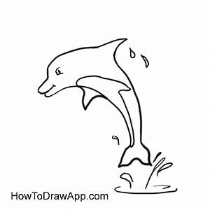 Learn how to draw a dolphin step by step.