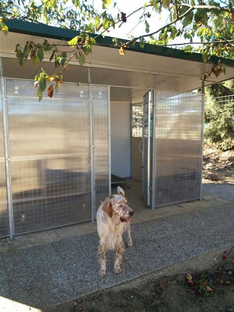 box cani per auto box per cani da esterno singolo con riparo coibentato retex