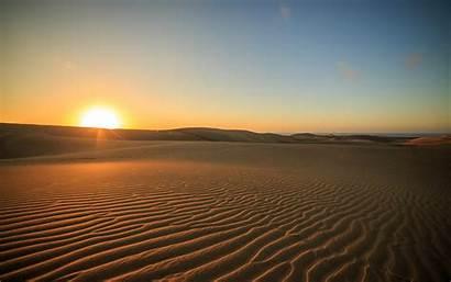 Desert Sunset Sunlight Nature Landscape Safari Camel