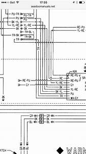 96 Sea Doo Wiring Diagram