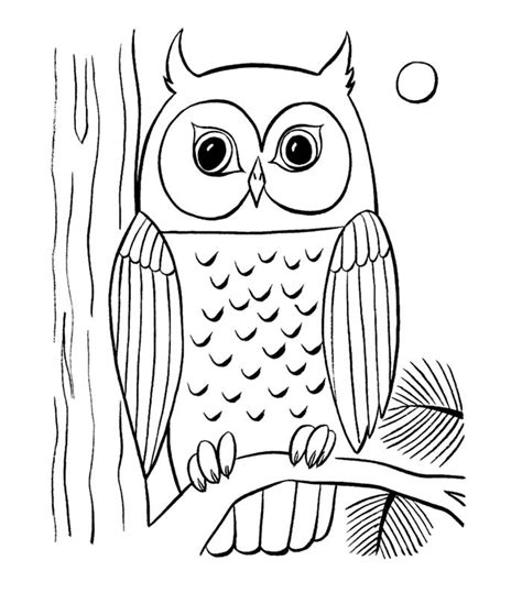 animal colouring pages   print