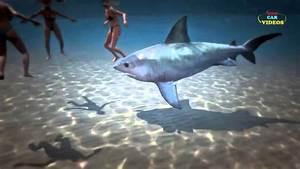 Funny Shark Attacks | www.pixshark.com - Images Galleries ...