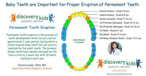 permanent tooth eruption pediatric dentist  frisco