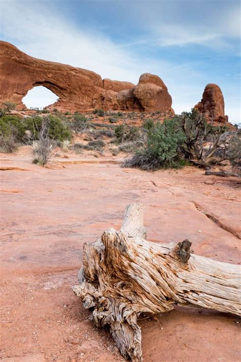 utah wilderness adventures simplicity relished arches
