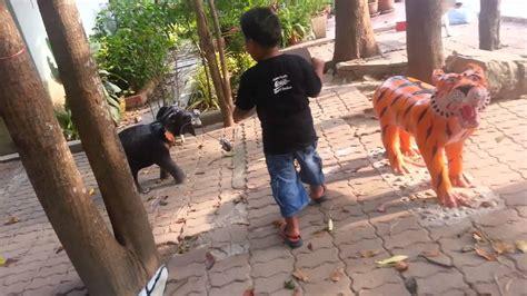 กอฟฟารีเที่ยวสวนสัตว์จำลอง 2050 - YouTube
