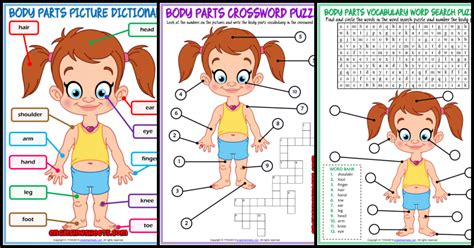 body parts esl vocabulary worksheets