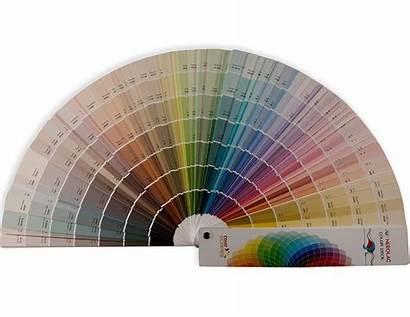 Nerolac Scapes Painting Paint Colour Fandeck Guide