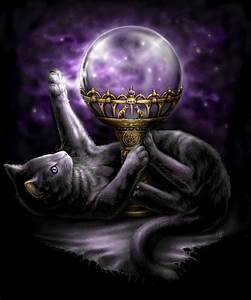 Cats And Witchcraft
