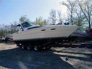 1987 Sea Ray 300 Sundancer Cruiser For Sale