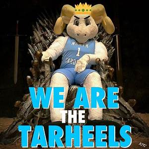 264 best images about Tar Heel Fans!! on Pinterest