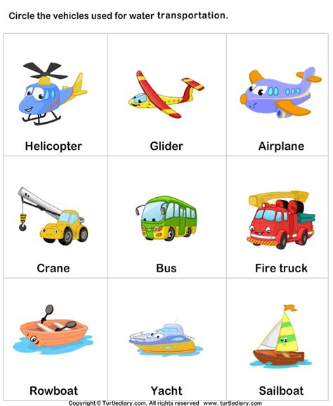 waterways transportation worksheet turtle diary