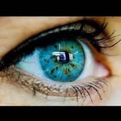 Beautiful Heterochromia Eyes