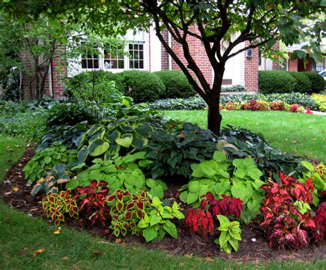 shade trees for small gardens shade ideas for yards the color scheme flows into the front yard too since the house sits