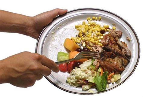 proportion cuisine food waste has reached stunning proportions in penang clean malaysia
