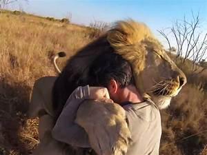 The Wild Hug : kevin richardson hugs a wild lion business insider ~ Eleganceandgraceweddings.com Haus und Dekorationen