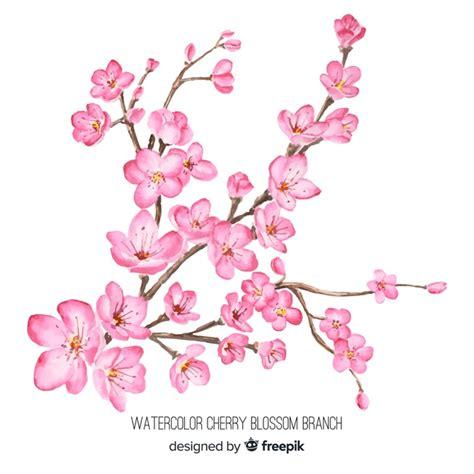 foto de Ramo de flor de cerejeira em aquarela Vetor Grátis