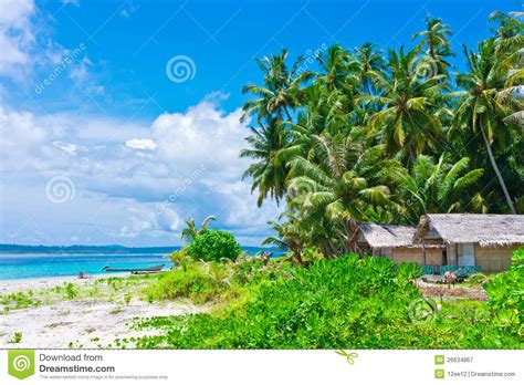 tropical island landscape tropical island landscape with huts stock image image 26634867