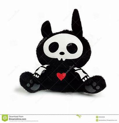 Bunny Skeleton Toy Royalty Bear Dreamstime
