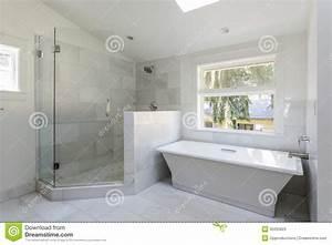 salle de bains moderne avec la douche et la baignoire With nettoyeur vapeur salle de bain