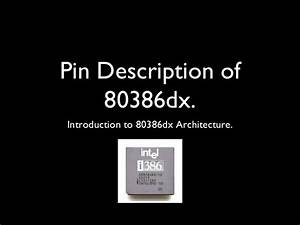 Pin Description Diagram Of Intel 80386 Dx Microprocessor