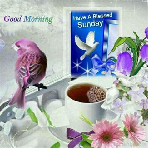 Blessed Sunday Morning Images Sunday Pictures Images Graphics For Whatsapp