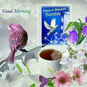 Good Morning Have A Blessed Sunday Image - DesiComments.com