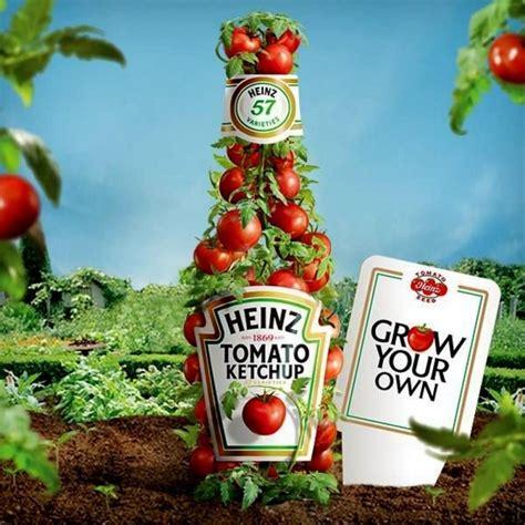 Heinz 1350 Tomato Seeds 2,25€ Heinz 1350 Tomato Seeds ...