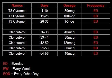 t3 clen cycle diet by scott
