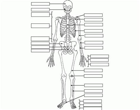 label  skeleton purposegames