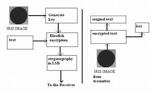 Multilevel Network Security Combining Cryptography And Steganography On Arm Platform