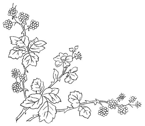 spring branch coloring picture floral drawing coloring